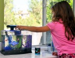 Caring for a GloFish