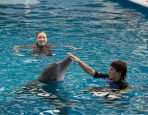 Sawer Hazel and Winter in Dolphin Tale 2
