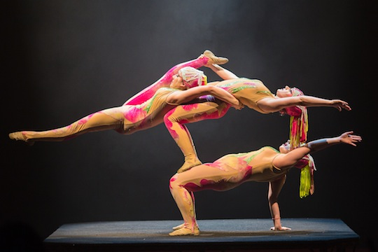Circus Vargas Contortionists