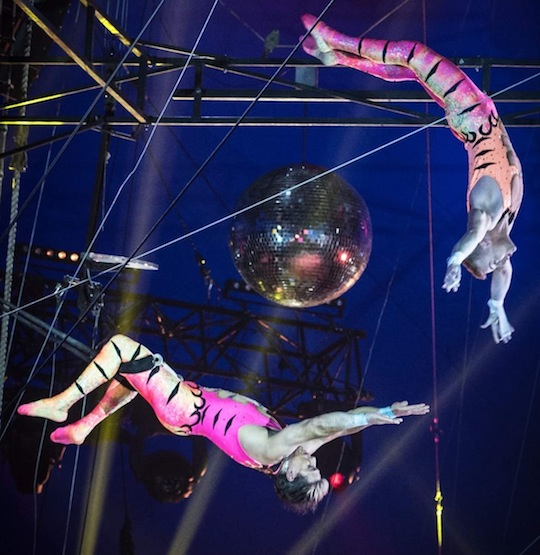 Circus Vargas Trapeze