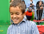 The Angry Birds Movie Premiere